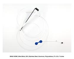 Blind Birds-A-e