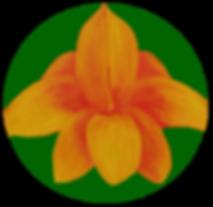 Logo suzanne kinésiologie