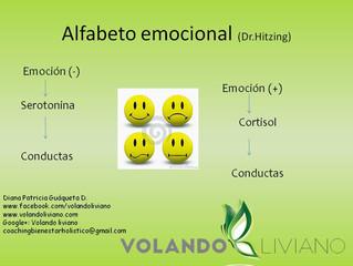 Alfabeto emocional