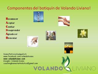 Componentes del botiquín de primeros auxilios para emociones