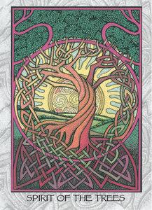 MN02 Spirit Of The Trees
