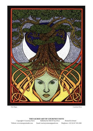 PG29 Tree Magic