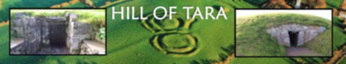 banner tara.jpg