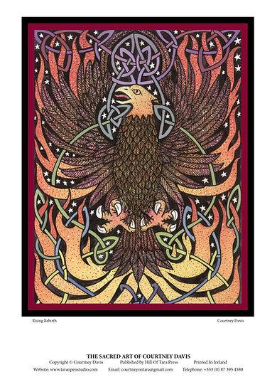 PN15 Phoenix Rebirth
