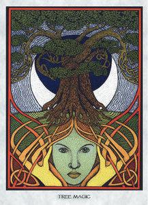 MT30 Tree Magic