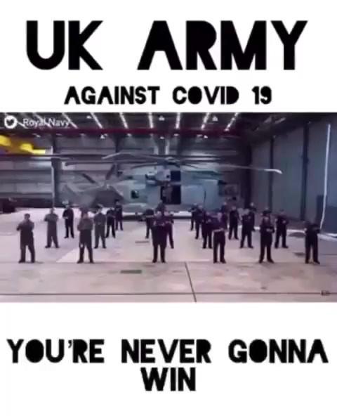 Fight, Fight, Fight