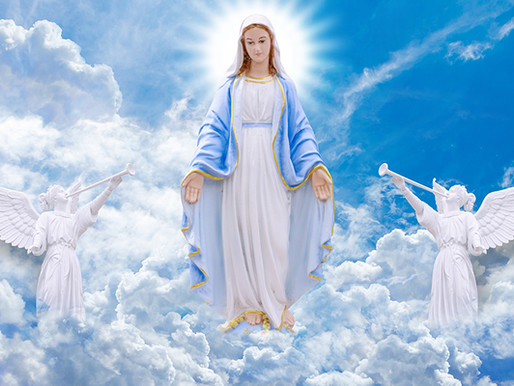 Mass Times - Feast of the Assumption of Mary