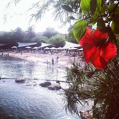 #dolphinreef #eilat #israel #beach #reds