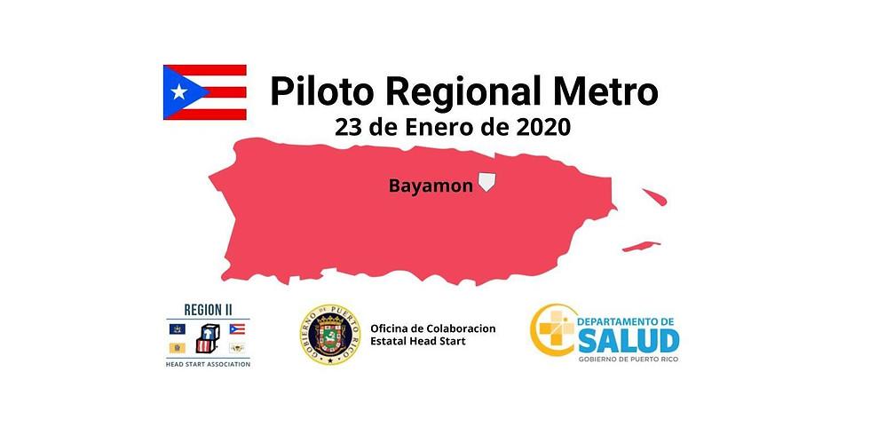 Piloto Regional Zona Metro - Bayamon