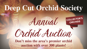 DCOS - 2019 Annual Orchid Auction