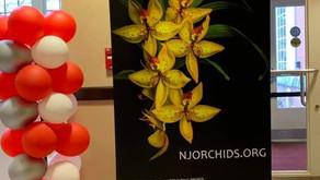 2019 CJOS (NJOS) Orchid Exhibit