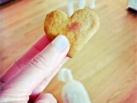 Dog Treat Low Down: 6 important things to consider when treating your dog
