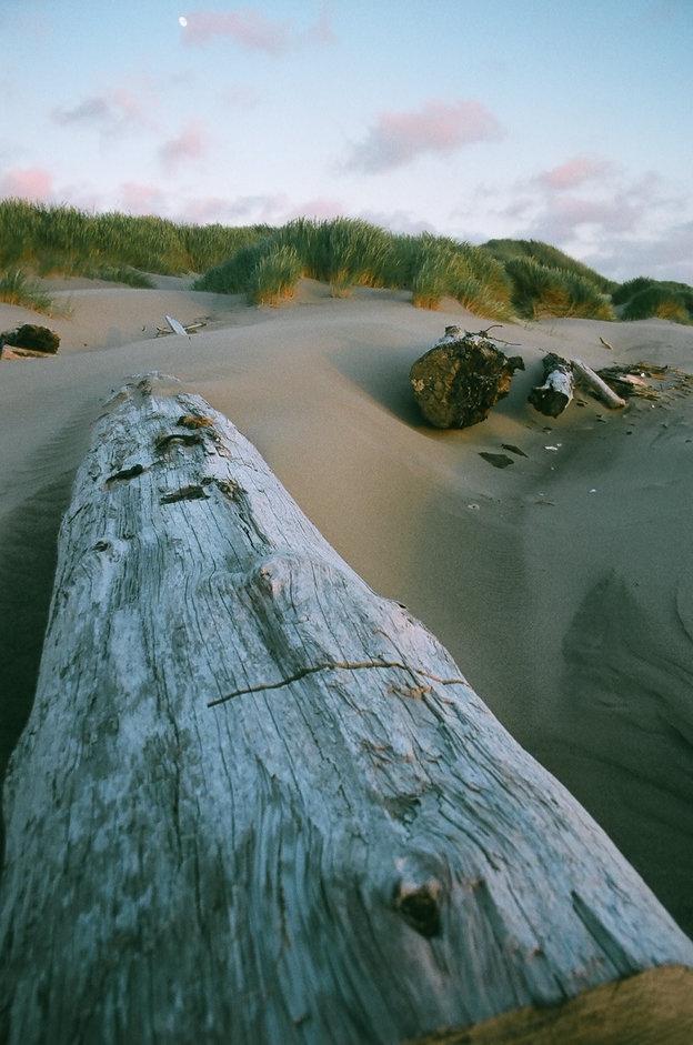 Bandon Dunes, Oregon