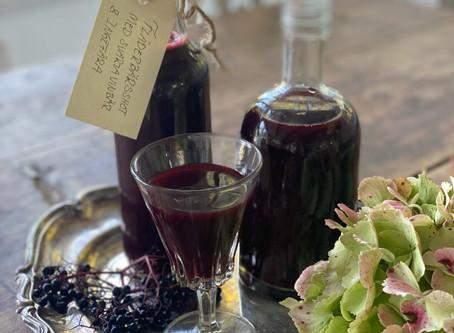 Fläderbärsshot med svarta vinbär och ingefära
