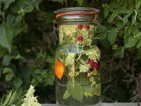 Ört, ogräs och blom infusion