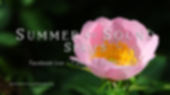 Summer of Sound (1).png