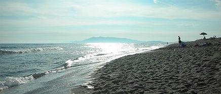 Pescia romana.jpg