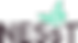 NESst-logo-LogotypeAndMark-Regular-RGB.p