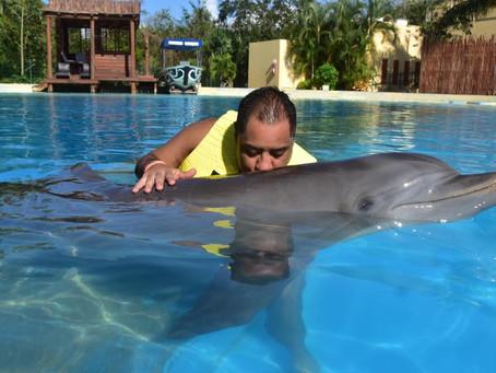 Dolphinaris gran experiencia
