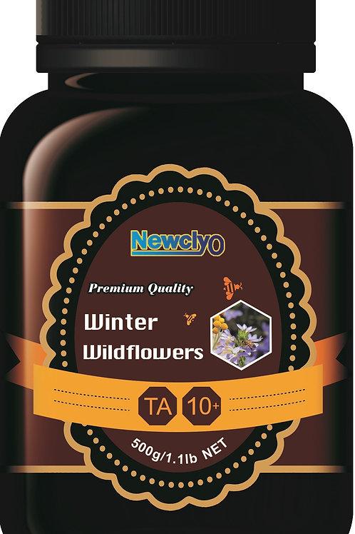 Winter Wildflowers Honey 10+