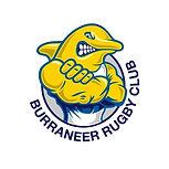 Burraneer Rugby Club Dolphin