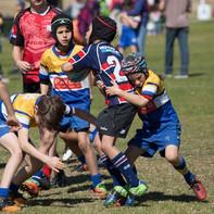 Burraneer Rugby U9 Minis