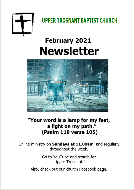 feb 2021 newsletter cover.png