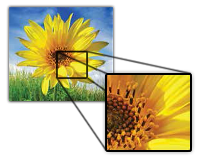 Visualiser Document Camera Image Detail