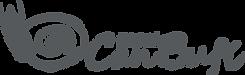 CAN BUFI Logo horizontal OK.png