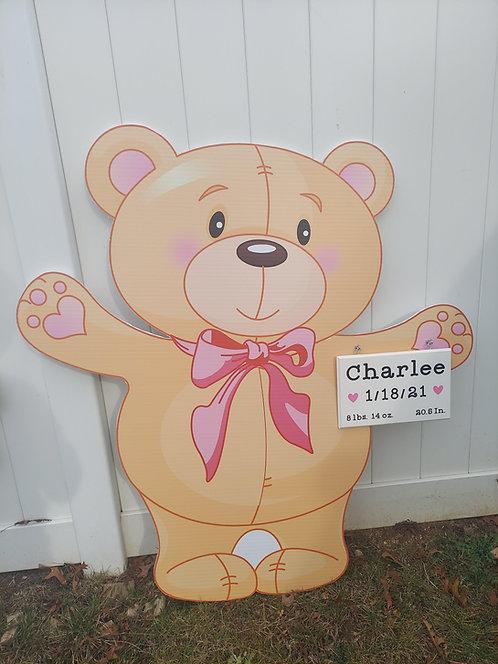 Baby Girl Bear Rental