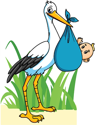 Storks Boy