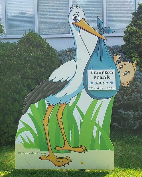 Baby Boy Stork Rental