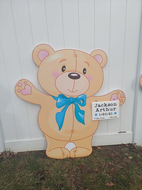Baby Boy Bear Rental