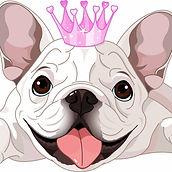 chewish princess.jpg
