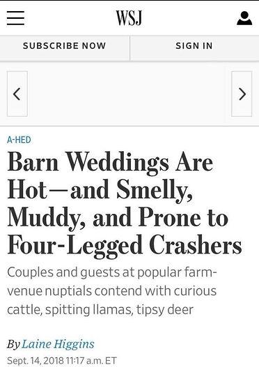 wsj-headline.jpg