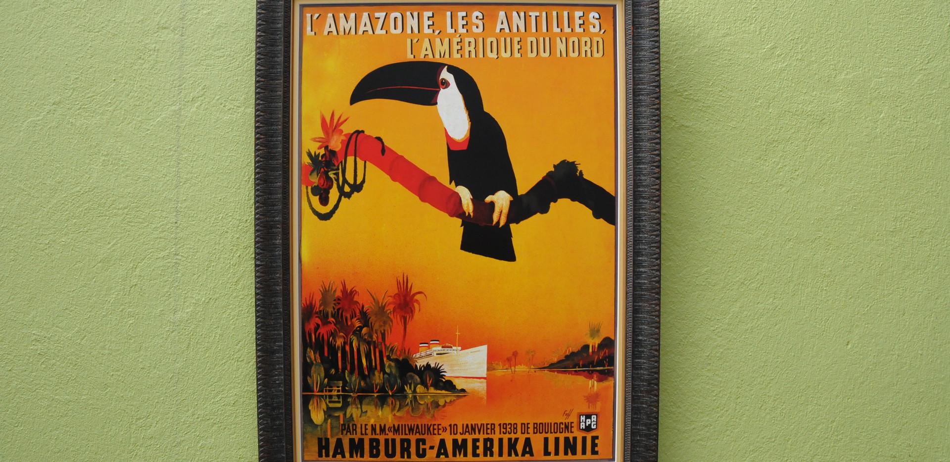 L`Amazone les Antilles