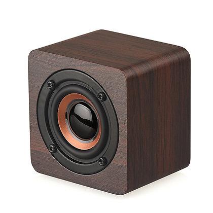 EK1000 Portable Bluetooth Speaker