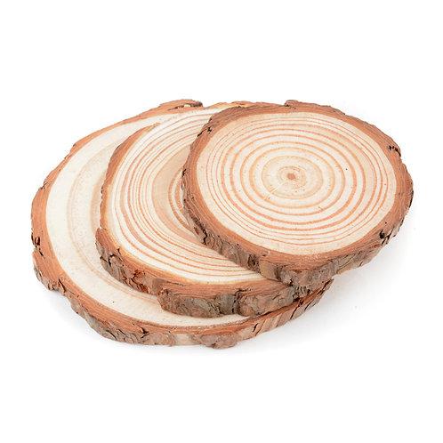 Tree Trunk Slice Coasters