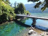 Puente. Avistaje de tr