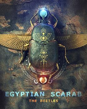 beetle02 - Egypt01.jpg