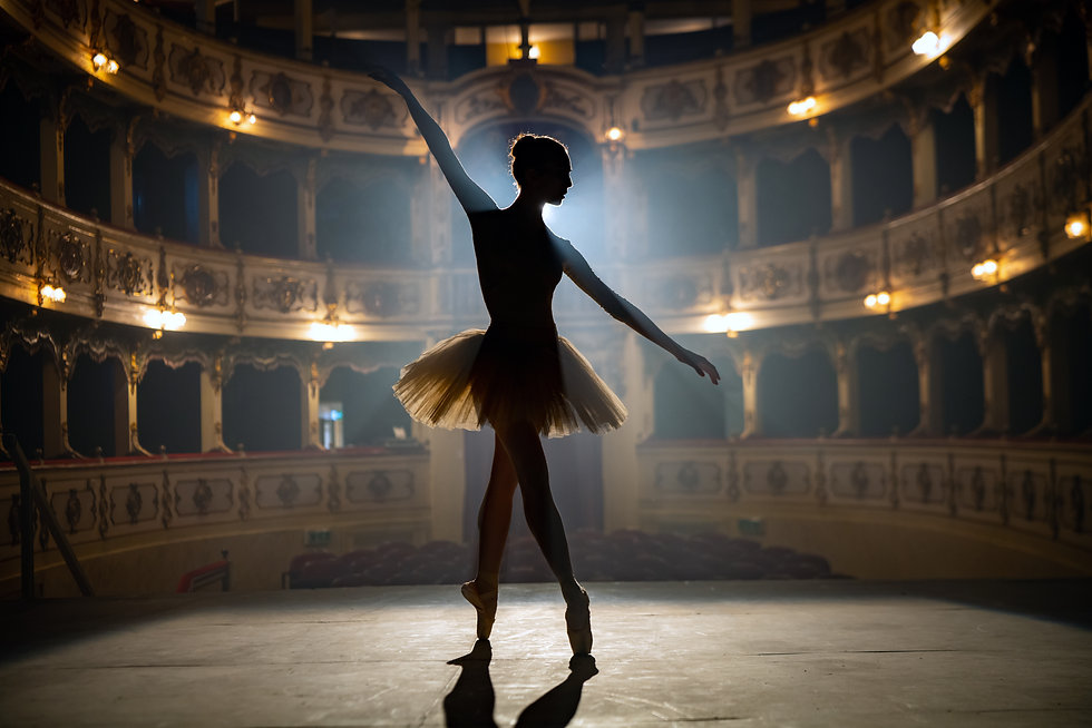 Silhouette of a young graceful classical
