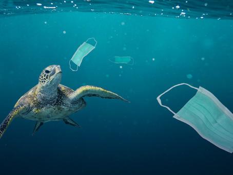 Neden Tek Kullanımlık Plastiği Hayatınızdan Çıkarmalısınız?