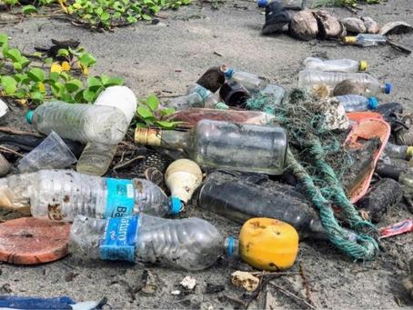 Plastik Kirliliği İklim Değişikliğine Nasıl Etki Ediyor?