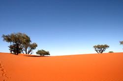 sandhillpage 2