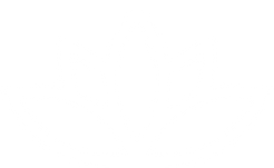 Lotus_Duo-Icon_Lotus.png