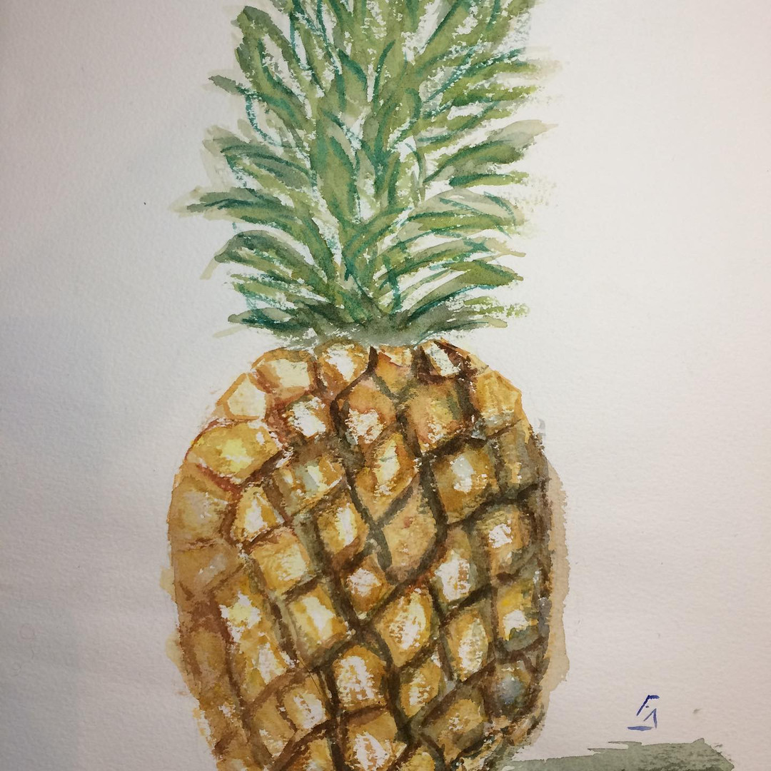Fruit d'hiver - Ananas