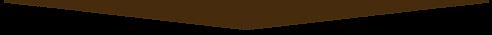 arrow-brown 4.png