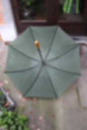 Parapluie ouvert.JPG
