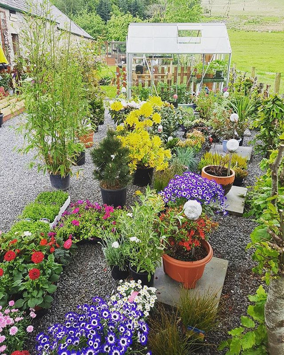 Top tips for easy garden care this summer