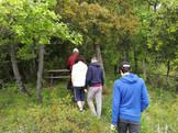 Randonnée dans la forêt de Polydendri